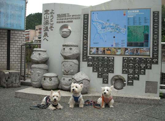 20119-18-1.jpg