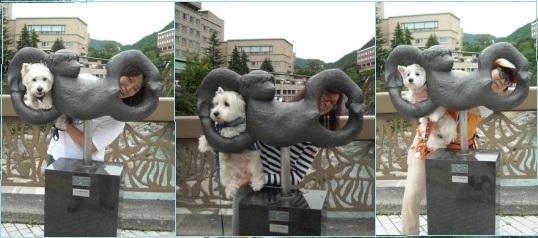 20119-18-2.jpg