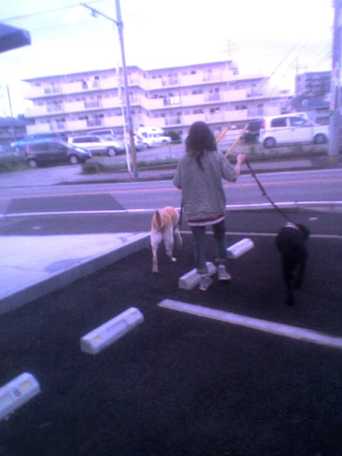 SoraWindy20111022_1641.jpg