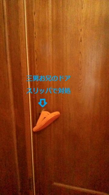 2011111513180000.jpg