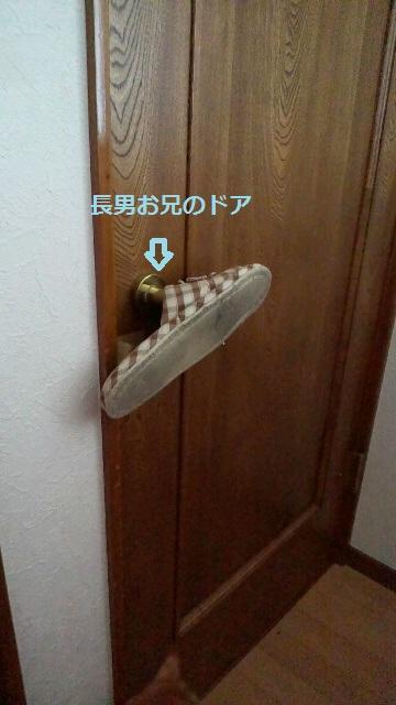 2011111513190000.jpg