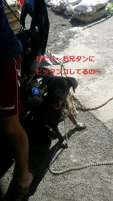 2011112012550001.jpg