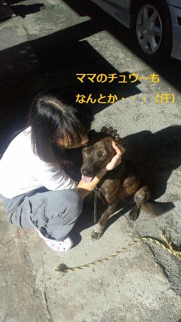 2011112012560001.jpg