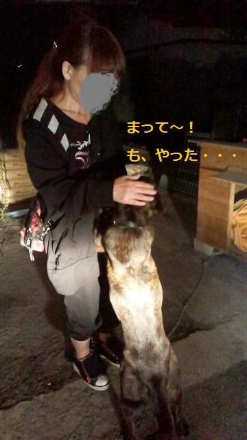 2011112119250000.jpg