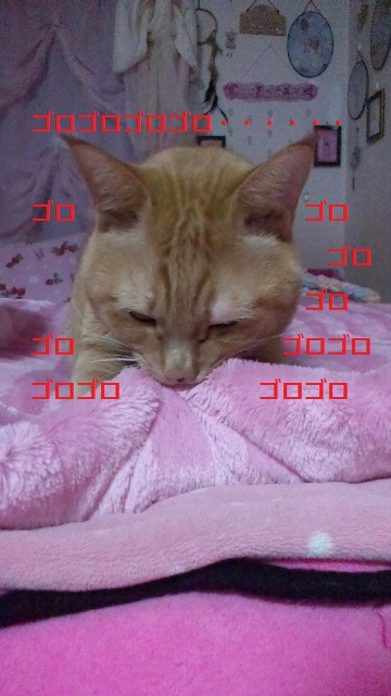2011122300330001.jpg