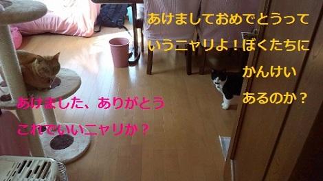 2012010113110000.jpg