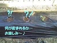 20111101134305.jpg