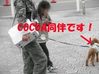 PA300080.jpg