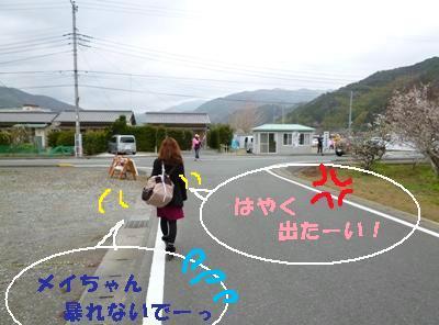 004-yado2P1010298.jpg