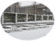 会場雪景色