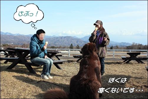 2012_0320woof0111.jpg