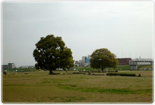 2012_0416kasenjiki0017.jpg