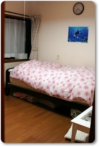 2012_0426biwako20003.jpg