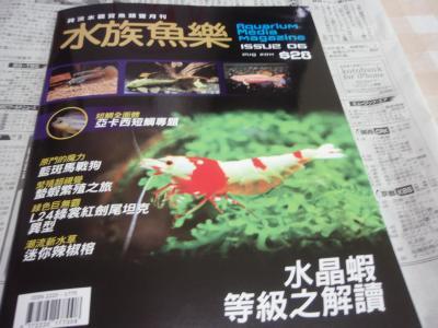 香港お熱帯魚の本