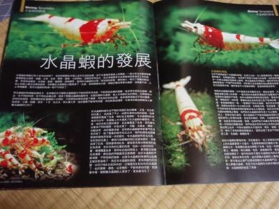 中国熱帯魚本1