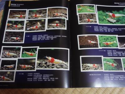中国熱帯魚本2