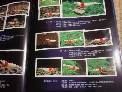 中国熱帯魚本3
