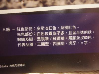 中国熱帯魚本4