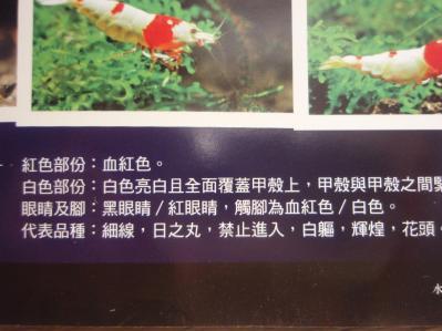 中国熱帯魚本5