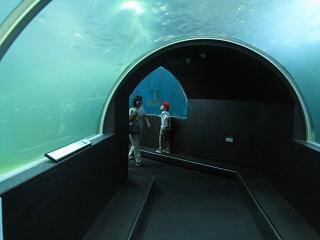 串本海中公園・水中トンネル