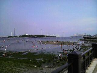 海の公園から見た八景島