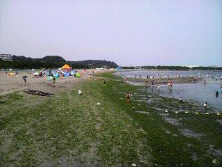 夏の海の公園