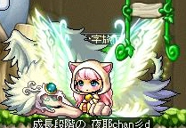 Maple130329_214904.jpg