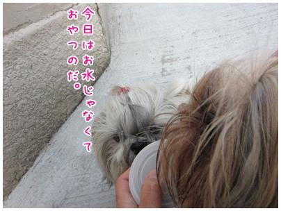 2011-09-29-03.jpg