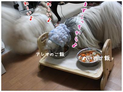 2011-10-07-01.jpg