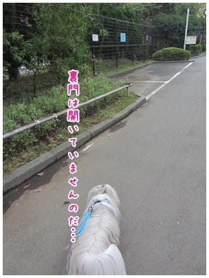 2011-10-11-01.jpg