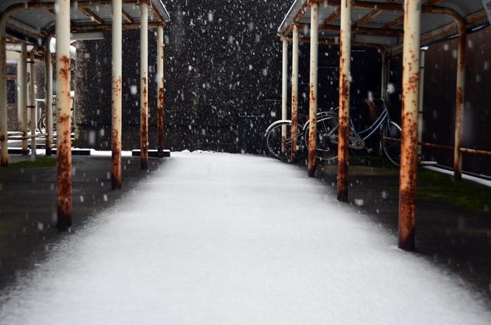 雪の駐輪場-2