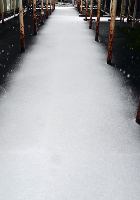 雪の駐輪場-3