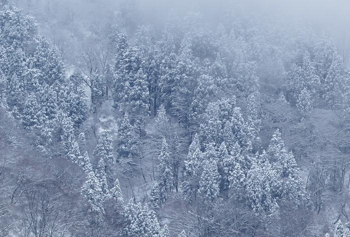 雪降る山-1