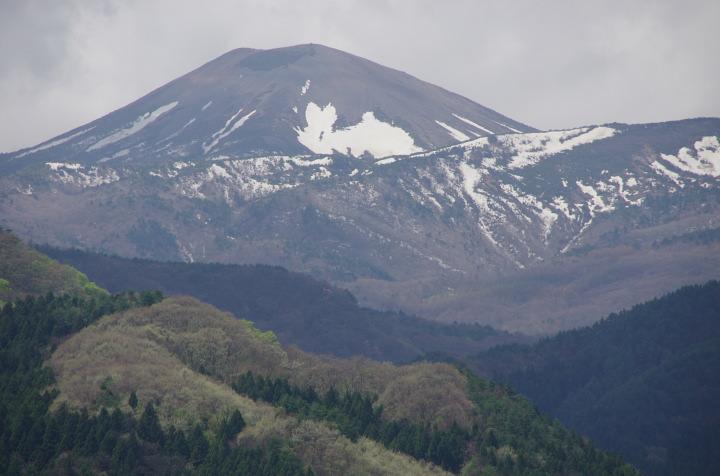 雪うさぎ2012