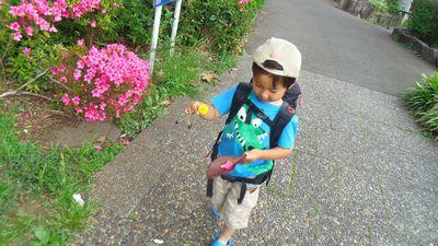 biwa2_20130528230855.jpg
