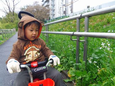 daikon_20130315005748.jpg