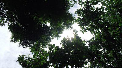 sky01_20130627232419.jpg