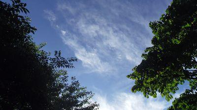 sky02_20130627232421.jpg