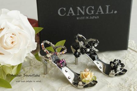CANGAL-1.jpg