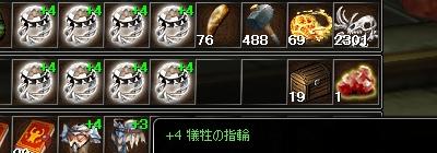 +4犠牲の指輪8個
