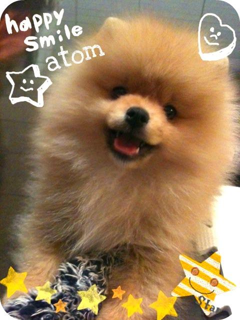 smile-atom.jpg