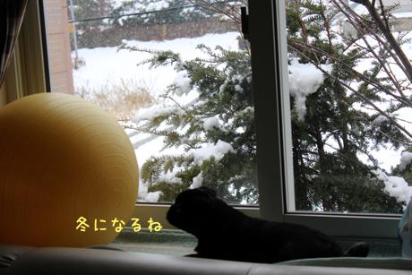 いよいよ冬だね~!