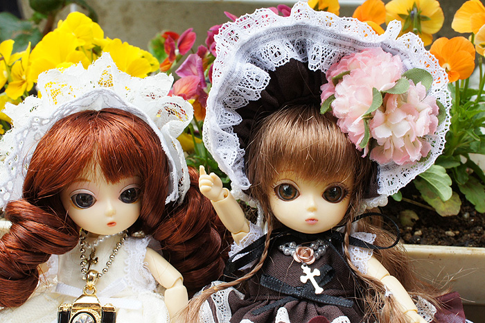 11-10-14-niwa-08.jpg