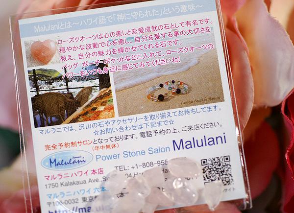 11-10-4-malulani-hawaii-013.jpg