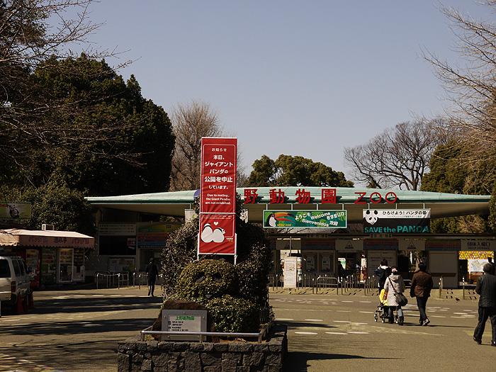 13-3-11-ueno-010.jpg