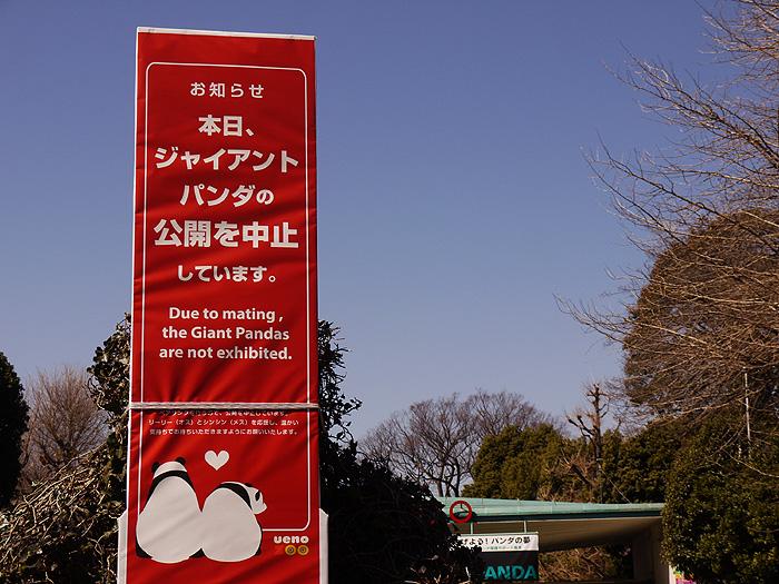 13-3-11-ueno-011.jpg