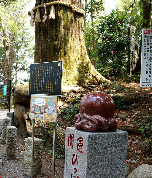 13-4-16-takao-07.jpg
