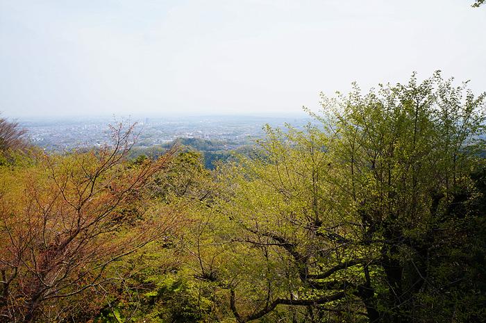 13-4-16-takao-09.jpg