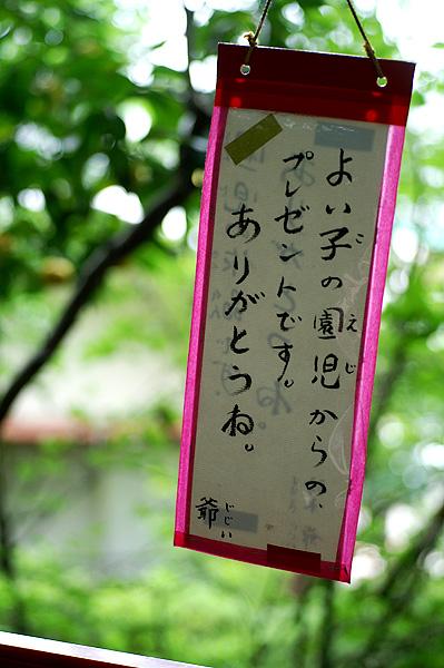 13-6-10-taka-023.jpg