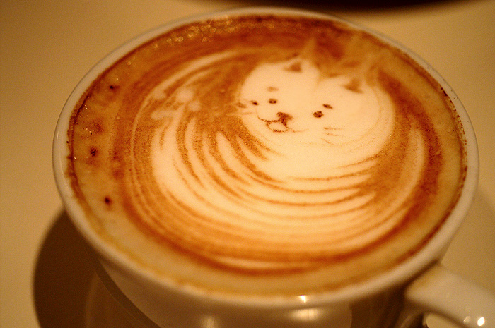13-6-26-cafe-021.jpg